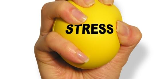 http://alsafeeradvt.com/images/products/stationery_gifts/stress_ball/stress_ball_01.jpg