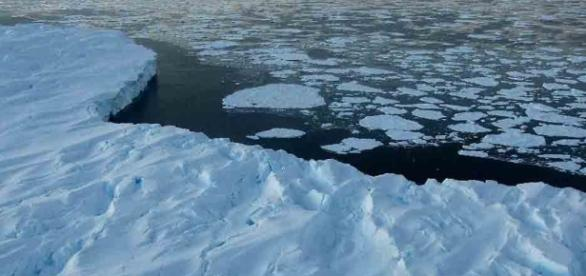 Vírus fatais escondidos no gelo podem ressuscitar com o aquecimento global