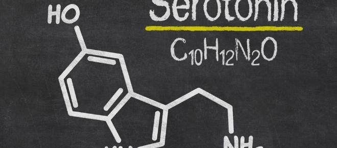 La molecola della felicità? Si chiama serotonina