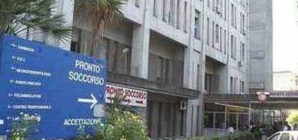 Napoli, zanzare all'ospedale San Giovanni Bosco