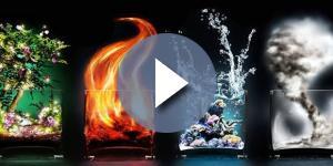 Quatro elementos: terra, fogo, ar e água e os signos