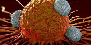 L'immunoterapia inizia a dare delle risposte positive anche nel mieloma multiplo