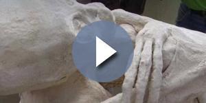 La mummia umanoide scoperta in Perù