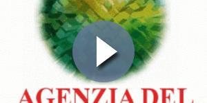 Concorso Pubblico Agenzia del Demanio: domanda a luglio 2017