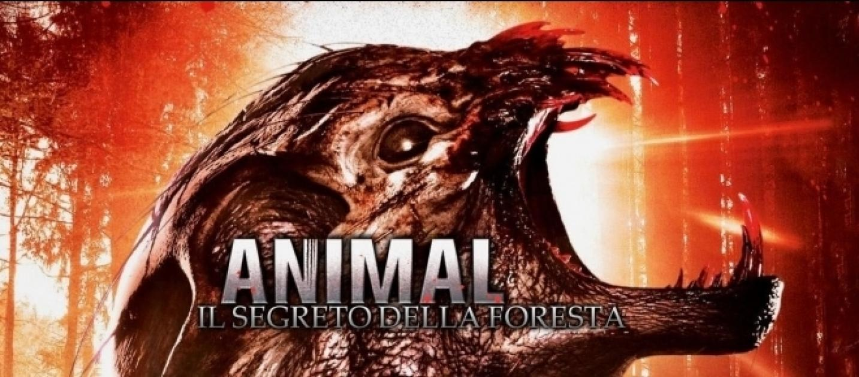 Animal il segreto della foresta recensione del film in for Il film della cabina 2017
