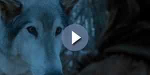 Arya Stark and Nymeria. Screencap: GameofThrones via YouTube