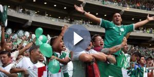 Palmeirenses comemoram muito nas redes sociais