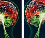 La dieta gioca un ruolo importante sia nell'insorgenza che nel contrasto dell'Alzheimer.