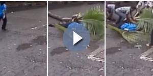 Mulher morre após ser atingida por coqueiro (Foto: Reprodução0