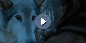 'Game of Thrones': Arya and Nymeria reunion. Screecap: GameofThrones via YouTube