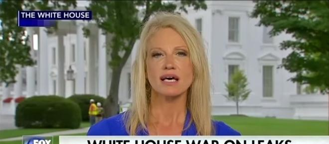 Kellyanne Conway goes on wild tirade about getting hired to work in White House