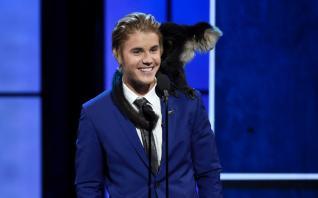 Justin Bieber insiste que tinha todos os documentos do seu macaco