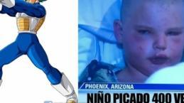 Video: Niño sobrevive al ataque de 400 abejas gracias a técnica de Dragon Ball Z