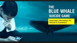 Blue whale, ecco nel dettaglio le 50 folli 'prove' da superare