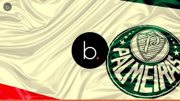 Assista: Palmeiras recebe reforços especiais para quarta-feira (26)