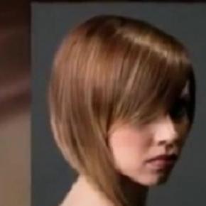 Ha un bel taglio di capelli in inglese